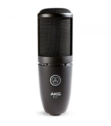 AKG P120 High-Performance Studio Condenser Vocal Microphone