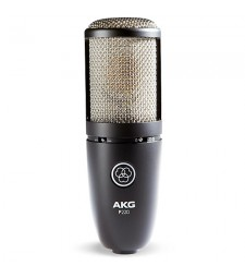 AKG P220 High-Performance Studio Condenser Vocal Microphone